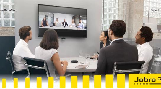 Mit professionellen Tools erfolgreiche Videokonferenzen führen!